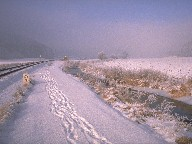 Creek near Schelklingen in winter covering, Germany 1991